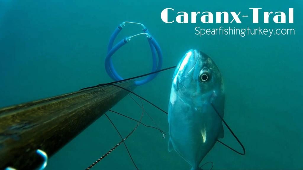 Zıpkıncılar Yüzünden Balık Kalmadı !!!