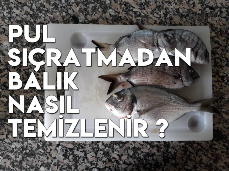 Pul Sıçratmadan Balık Nasıl Temizlenir? Pratik Balık Temizleme Yöntemi