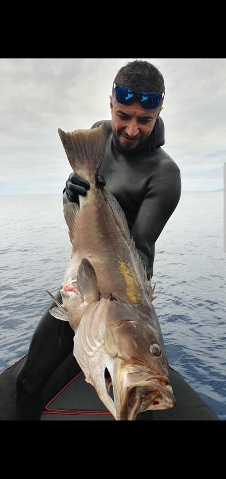 Oğuzhan Aydın Grida-Golden Grouper (Epinephelus costae) 7.820 Kg