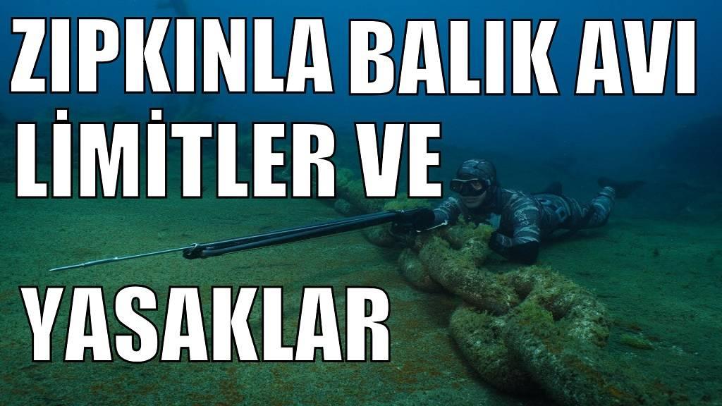 Zıpkınla Balık Avı Yasaklar ve Limitler| Zıpkın Avı Türkiye