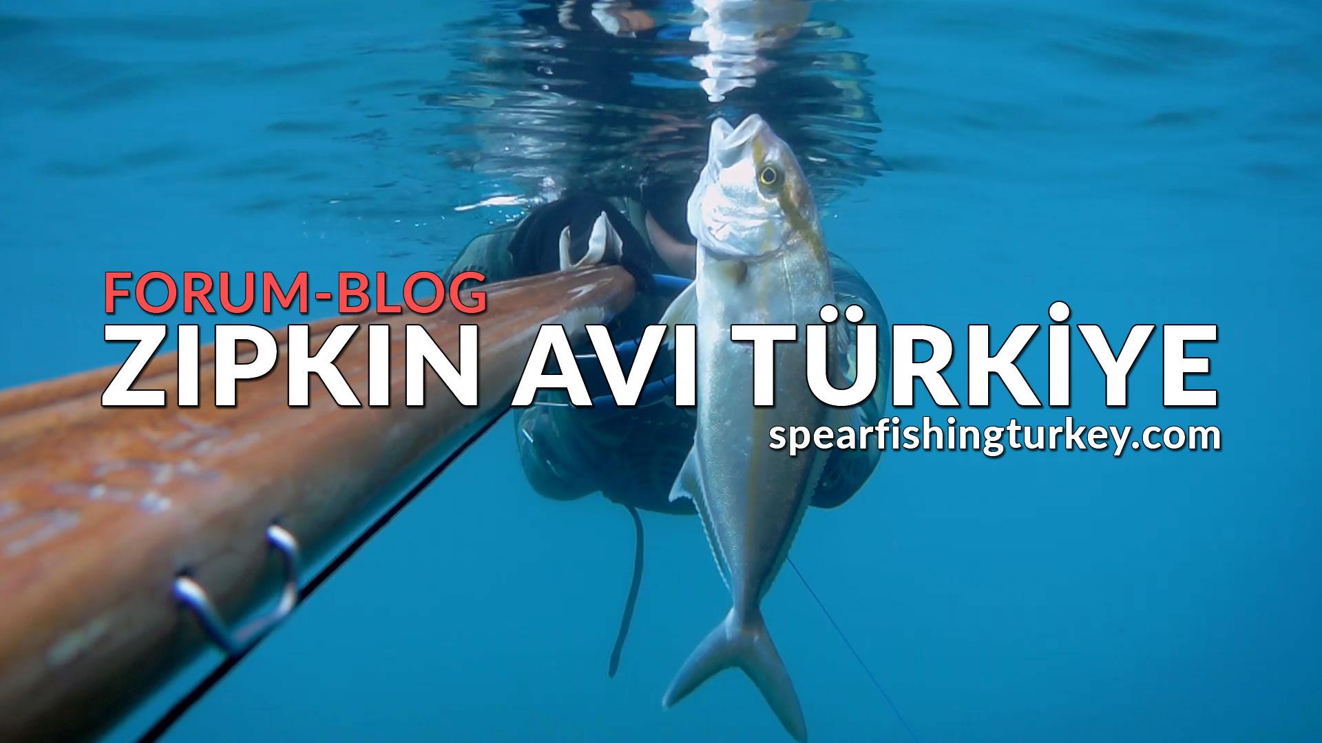 zıpkın avı türkiye forum