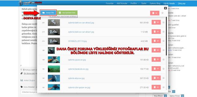 Zıpkın Avı Türkiye Foruma Resim Ekleme4