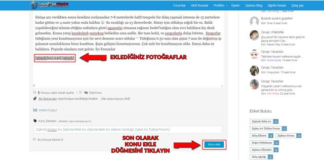 Zıpkın Avı Türkiye Foruma Resim Ekleme8