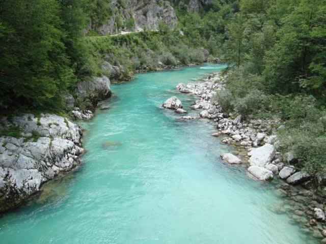 iç sularda zıpkınla av yasağı